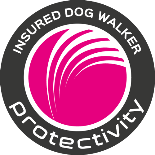 Dog Walking Insurance Site Seal by Protectivity Insurance