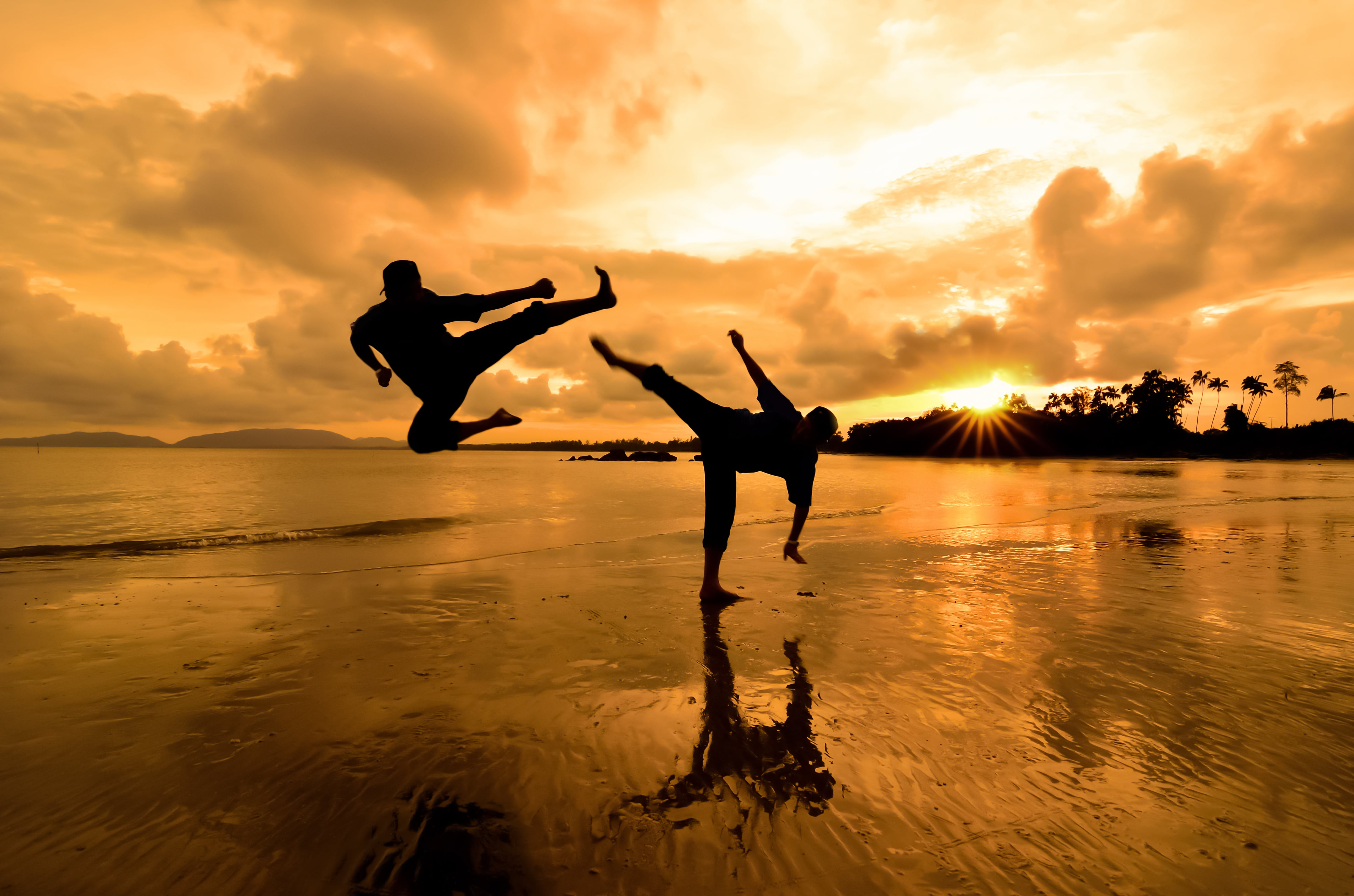 Silhouette of two people performing martial arts