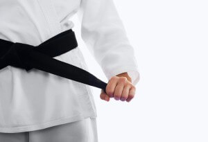 martial arts business