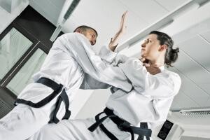 martial arts (3)