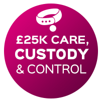 25k-care-custody-control-pbi