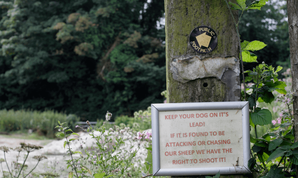 Sheep Worrying Sign