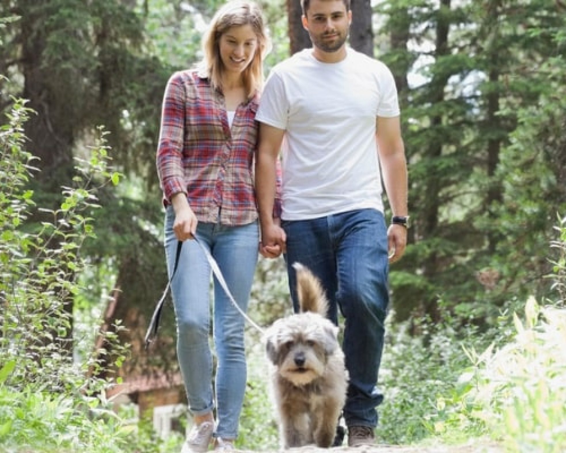 Couple walking dog in the woods