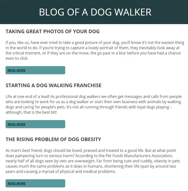Dog Walking Blog - SEO