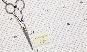 Late Cancellations - Calendar